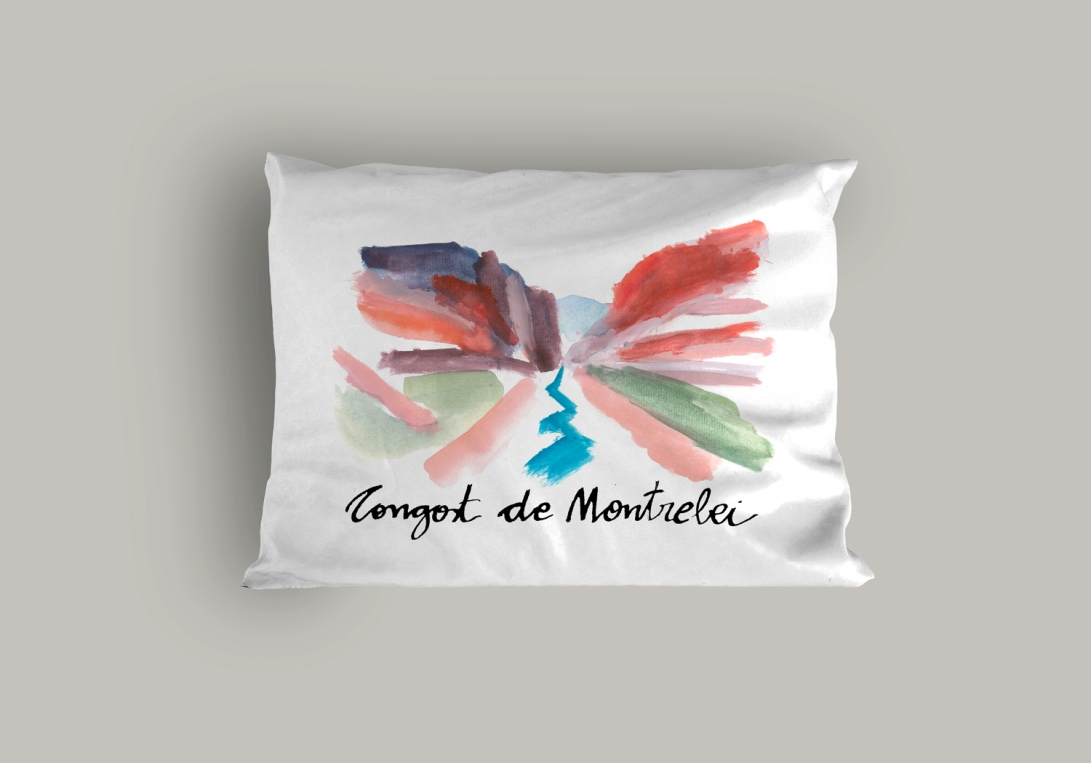 pillow_congost_colors1