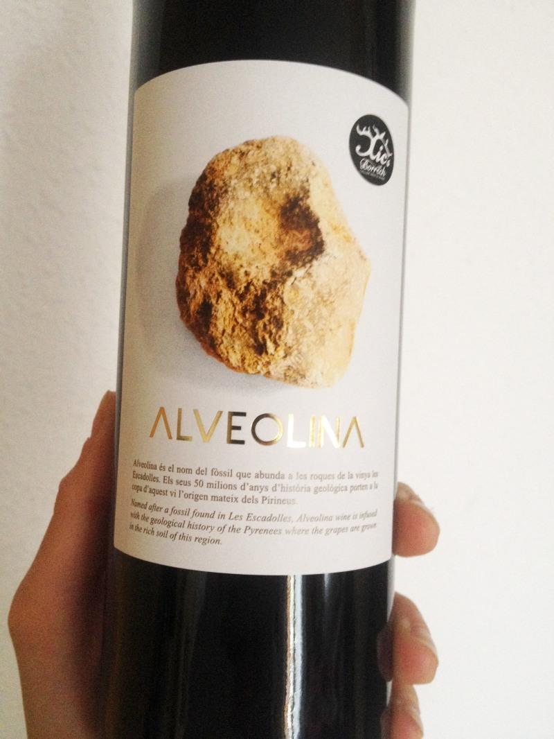 Alveolina